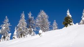 μπλε χειμώνας ουρανού το Στοκ φωτογραφία με δικαίωμα ελεύθερης χρήσης