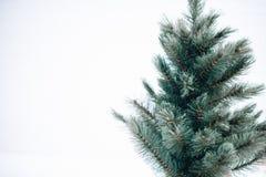 Μπλε χριστουγεννιάτικο δέντρο σε ένα άσπρο υπόβαθρο απομονώστε στοκ φωτογραφίες
