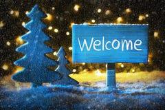 Μπλε χριστουγεννιάτικο δέντρο, υποδοχή κειμένων, Snowflakes Στοκ φωτογραφία με δικαίωμα ελεύθερης χρήσης