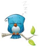 Μπλε ύπνος πουλιών Tweeter Στοκ Εικόνες