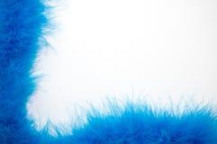 Μπλε Boa φτερών ανασκόπηση Στοκ φωτογραφίες με δικαίωμα ελεύθερης χρήσης