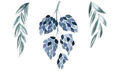 Μπλε floral illustralion απεικόνιση αποθεμάτων