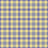 μπλε plaid κίτρινο Στοκ εικόνες με δικαίωμα ελεύθερης χρήσης