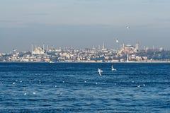 μπλε sophia μουσουλμανικών τεμενών hagia Στοκ εικόνες με δικαίωμα ελεύθερης χρήσης