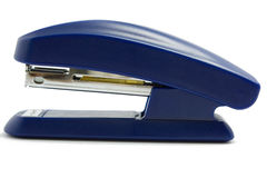μπλε stapler Στοκ φωτογραφίες με δικαίωμα ελεύθερης χρήσης