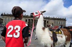 Μπογκοτά Κολομβία Στοκ φωτογραφίες με δικαίωμα ελεύθερης χρήσης