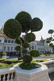 Μπονσάι, μεγάλο παλάτι, Ταϊλάνδη, Μπανγκόκ Στοκ Φωτογραφίες