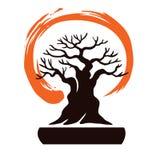 Μπονσάι της Ιαπωνίας με το σύμβολο της Zen Στοκ Φωτογραφία