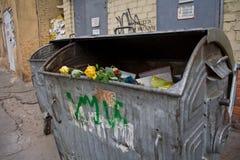 μπορέστε απορρίμματα τρια&nu Στοκ φωτογραφία με δικαίωμα ελεύθερης χρήσης