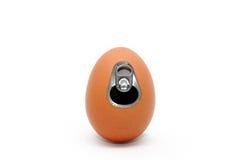 μπορέστε αυγό Στοκ φωτογραφία με δικαίωμα ελεύθερης χρήσης