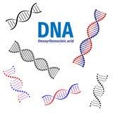 μπορέστε να αλλάξετε την απεικόνιση DNA ιατρική το άλλο χαρτοφυλάκιό μου βλέπει τα απλά διανυσματικά διανύσματα εσείς Στοκ φωτογραφία με δικαίωμα ελεύθερης χρήσης