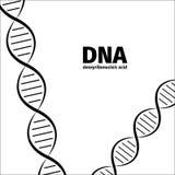 μπορέστε να αλλάξετε την απεικόνιση DNA ιατρική το άλλο χαρτοφυλάκιό μου βλέπει τα απλά διανυσματικά διανύσματα εσείς Στοκ Φωτογραφίες