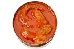 μπορέστε ντομάτα κασσίτερου σάλτσας ψαριών Στοκ φωτογραφία με δικαίωμα ελεύθερης χρήσης