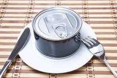 μπορέστε τρόφιμα να κονσε&rh Στοκ φωτογραφία με δικαίωμα ελεύθερης χρήσης