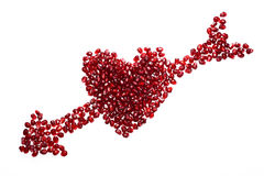 μπορέστε χοληστερόλη να κλείσετε χαμηλότερη μακρο σπόροι ροδιών που αυξάνονται superfoods Στοκ Εικόνες