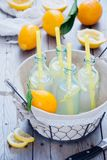 Μπουκάλια λεμονάδας καλαθιών Στοκ Εικόνα