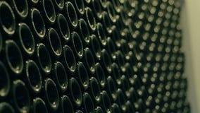 Μπουκάλια μερών για την εμφιάλωση του ώριμου ποτού στο εργοστάσιο κρασιού Μπουκάλι γυαλιού για το κρασί απόθεμα βίντεο