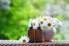 Μπουκάλια με το πετρέλαιο μαργαριτών, τη φρέσκα μαργαρίτα λουλουδιών και τα φύλλα σε έναν εθνικό στοκ εικόνες