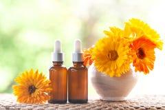 Μπουκάλια με το πετρέλαιο calendula λουλουδιών στη φύση backgraund, βιο, org στοκ εικόνα