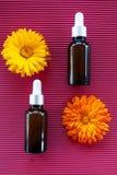 Μπουκάλια με το πετρέλαιο calendula λουλουδιών στο κόκκινο backgraund, γεωμετρικό, στοκ εικόνα