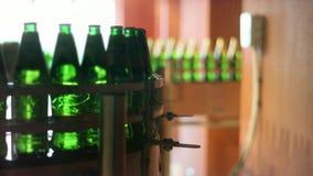 Μπουκάλια μπύρας που κινούνται στη ζώνη μεταφορέων στο εργοστάσιο Αυτοματοποιημένη γραμμή κατασκευής φιλμ μικρού μήκους
