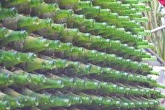μπουκάλια πράσινα Στοκ εικόνα με δικαίωμα ελεύθερης χρήσης