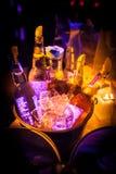 Μπουκάλια της μπύρας ΚΟΛΛΟΕΙΔΟΥΣ ΔΙΑΛΎΜΑΤΟΣ σε έναν κάδο Στοκ φωτογραφία με δικαίωμα ελεύθερης χρήσης