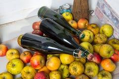 Μπουκάλια του μηλίτη και μήλα της Νορμανδίας Στοκ Φωτογραφίες