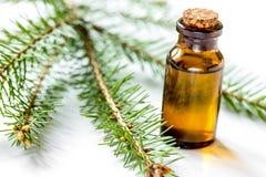 Μπουκάλια των κλάδων ουσιαστικού πετρελαίου και έλατου για aromatherapy και το s Στοκ φωτογραφίες με δικαίωμα ελεύθερης χρήσης