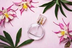 Μπουκάλι αρώματος γυναικών ` s και ρόδινα λουλούδια στο ρόδινο υπόβαθρο Στοκ φωτογραφία με δικαίωμα ελεύθερης χρήσης