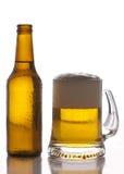 Μπουκάλι και ποτήρι της μπύρας στοκ εικόνα με δικαίωμα ελεύθερης χρήσης