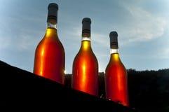 Μπουκάλι κρασιού Στοκ Φωτογραφίες