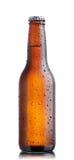 μπουκάλι μπύρας καφετί στοκ φωτογραφία