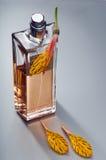 Μπουκάλι του αρώματος Στοκ εικόνα με δικαίωμα ελεύθερης χρήσης