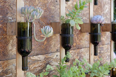 Μπουκάλια κρασιού που επαναχρησιμοποιούνται ως δοχείο λουλουδιών Στοκ φωτογραφία με δικαίωμα ελεύθερης χρήσης