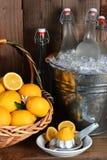 Μπουκάλια της λεμονάδας και των λεμονιών στοκ εικόνα