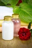 Μπουκάλια του ουσιαστικού πετρελαίου για aromatherapy Στοκ φωτογραφία με δικαίωμα ελεύθερης χρήσης