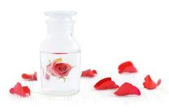 Μπουκάλι γυαλιού με το ροδαλό νερό, aromatherapy, οργανικό καλλυντικό για το skincare και κόκκινα πέταλα στο λευκό Στοκ Φωτογραφία