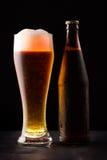 Μπουκάλι και ποτήρι της μπύρας στοκ φωτογραφίες