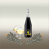 Μπουκάλι κρασιού και γυαλιά κρασιού, δύο κλάδοι της αμπέλου Στοκ Φωτογραφίες