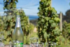 Μπουκάλι κρασιού στον αμπελώνα Στοκ εικόνες με δικαίωμα ελεύθερης χρήσης