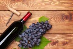 Μπουκάλι κόκκινου κρασιού και δέσμη των κόκκινων σταφυλιών Στοκ Εικόνες