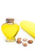 Μπουκάλι με argan το πετρέλαιο καλλυντικά μέσα Τρόφιμα Απομονωμένο υπόβαθρο Στοκ εικόνα με δικαίωμα ελεύθερης χρήσης