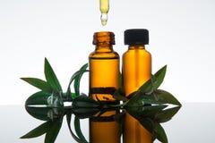 Μπουκάλι ουσιαστικού πετρελαίου με myrtle τα φύλλα, στο ηλέκτρινο γυαλί με dropper Στοκ Εικόνες