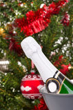 Μπουκάλι της σαμπάνιας ενάντια στο δέντρο chritsmas Στοκ Εικόνες