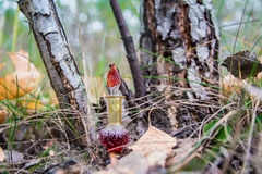 Μπουκάλι του δηλητήριου, δηλητηριώδης κάψα, αποκριές Στοκ εικόνες με δικαίωμα ελεύθερης χρήσης