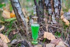 Μπουκάλι του δηλητήριου, δηλητηριώδης κάψα, αποκριές Στοκ εικόνα με δικαίωμα ελεύθερης χρήσης