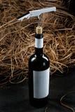 Μπουκάλι του κρασιού Στοκ Φωτογραφίες