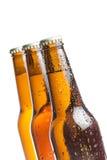 Μπουκάλι τρία της φρέσκιας μπύρας με τις πτώσεις, που απομονώνεται Στοκ Εικόνες