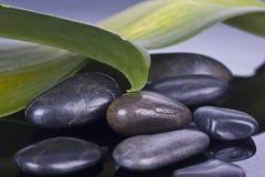 Μπουκάλι massage oil spa Στοκ Εικόνα